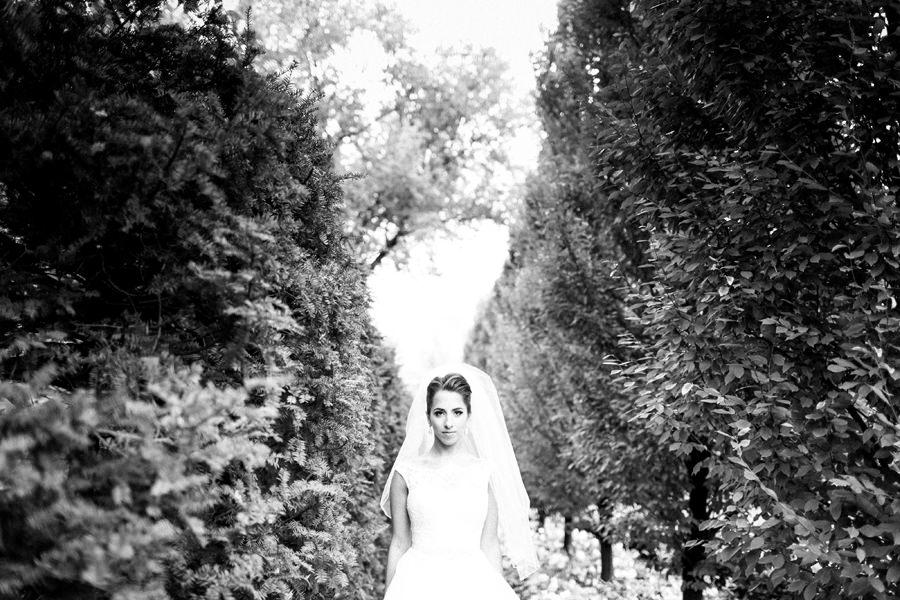 Toronto Bridal Portrait