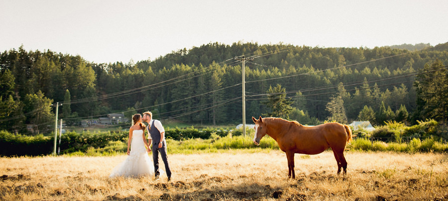 Farm wedding with a horse
