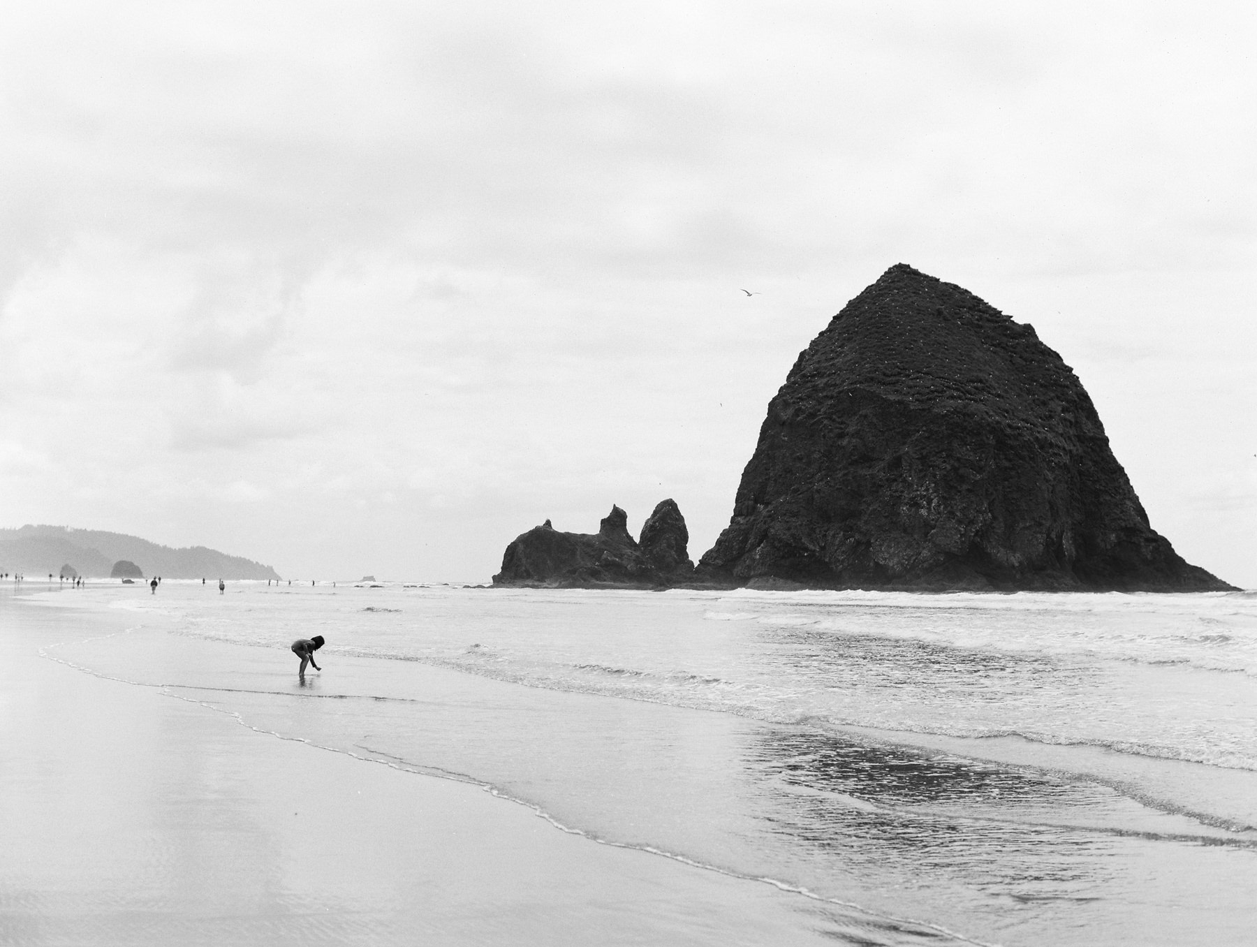 Cannon Beach Portraits-8