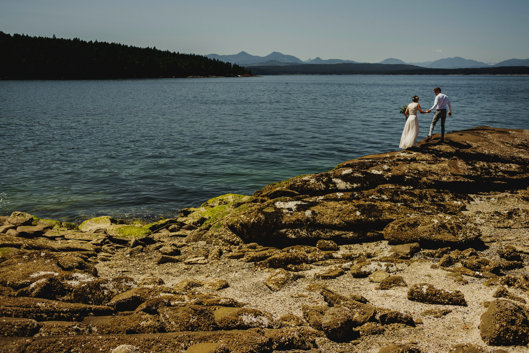 First Look on Thetis Island